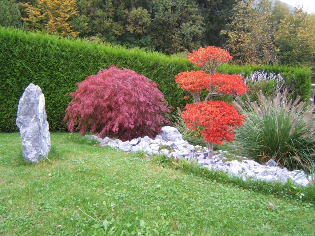 couleur d'automne Enkianthus campanulatus